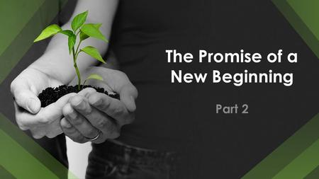 The Promise of a New Beginning Part 2. The Promise of a New Beginning Each sunrise is the dawning of a new day. Each birthday is full of opportunity and.