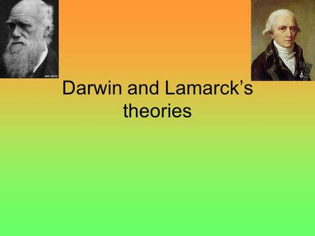 Darwin and Lamarck's theories. Darwin's theory Natural selection: The theory of evolution states that evolution happens by natural selection. The key.