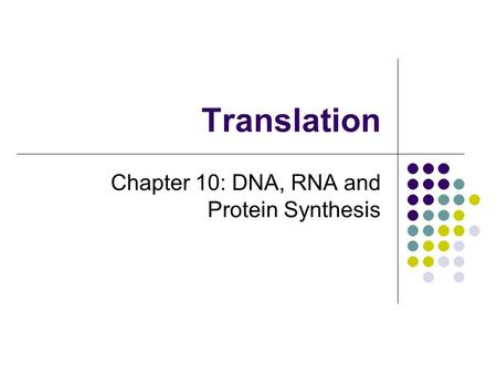 Chapter 10: DNA, RNA and Protein Synthesis
