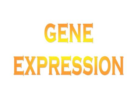 GENE EXPRESSION What is a gene? Mendel –Unit of inheritance conferring a phenotype Modern definition –Unit of DNA directing the synthesis of a polypeptide.