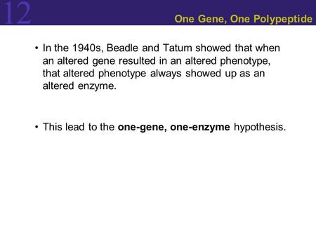 12 One Gene, One Polypeptide In the 1940s, Beadle and Tatum showed that when an altered gene resulted in an altered phenotype, that altered phenotype always.