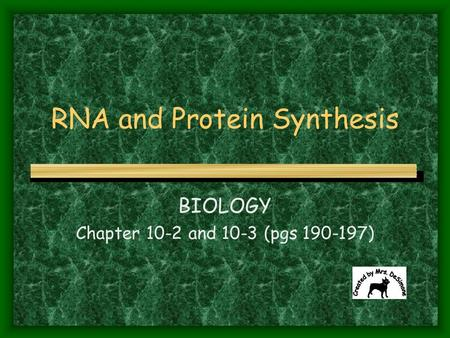 RNA and Protein Synthesis BIOLOGY Chapter 10-2 and 10-3 (pgs 190-197)
