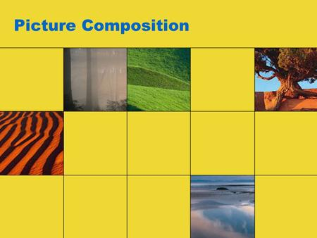 Picture Composition. There are two parts to taking good photographs –Exposure –Composition Exposure is the technical part of the photographic process.