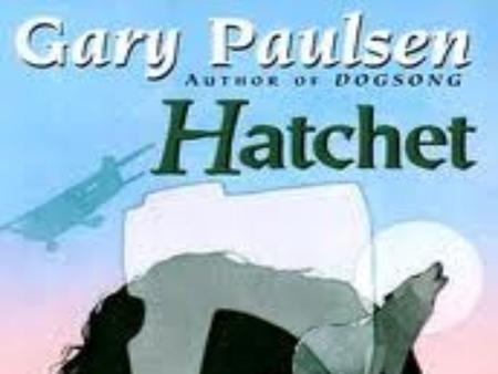 Hatchet Chapter 1 Brian is a fourteen year old boy who is traveling with his mother to a small airport in New York. He is going to visit his dad for the.