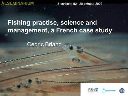 Fishing practise, science and management, a French case study Cédric Briand ÅLSEMINARIUM i Stockholm den 20 oktober 2005.