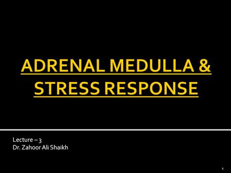 Lecture – 3 Dr. Zahoor Ali Shaikh 1.  Adrenal Medulla is a specialized ganglion of sympathetic autonomic nervous system.  Adrenal Medulla consists of.