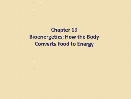Chapter 19 Bioenergetics; How the Body Converts Food to Energy.