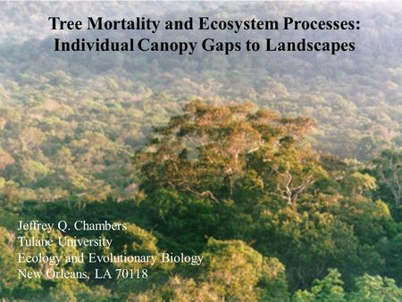 Tree Mortality and Ecosystem Processes: Individual Canopy Gaps to Landscapes Jeffrey Q. Chambers Tulane University Ecology and Evolutionary Biology New.