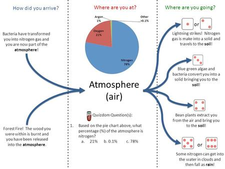 Atmosphere (air) Bacteria have transformed you into nitrogen gas and you are now part of the atmosphere! Forest Fire! The wood you were within is burnt.