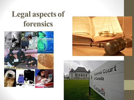 Legal aspects of forensics. Civil Law private law ◦ Regulates noncriminal relationships between individuals, businesses, agency of government, and other.