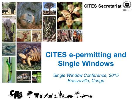 1 CITES e-permitting and Single Windows Single Window Conference, 2015 Brazzaville, Congo CITES Secretariat.