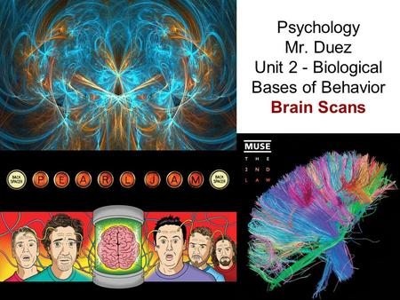 Psychology Mr. Duez Unit 2 - Biological Bases of Behavior Brain Scans.