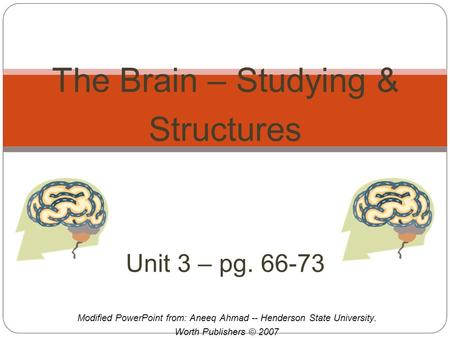 Modified PowerPoint from: Aneeq Ahmad -- Henderson State University. Worth Publishers © 2007 The Brain – Studying & Structures Unit 3 – pg. 66-73.