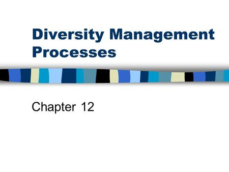 Diversity Management Processes Chapter 12.