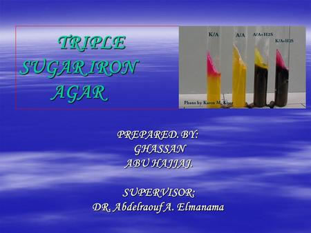 TRIPLE SUGAR IRON AGAR TRIPLE SUGAR IRON AGAR PREPARED. BY: GHASSAN ABU HAJJAJ. SUPERVISOR: DR. Abdelraouf A. Elmanama.