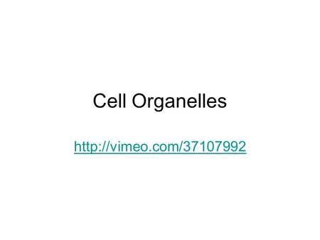 Cell Organelles http://vimeo.com/37107992.