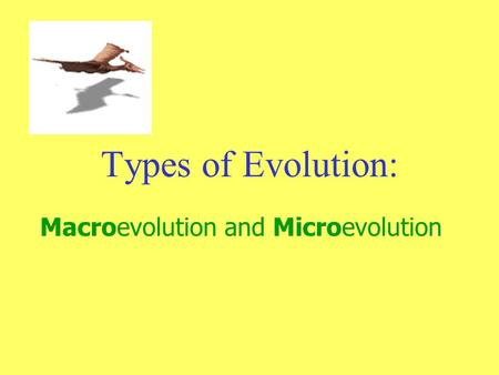 Types of Evolution: Macroevolution and Microevolution.