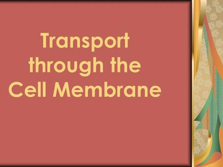 Transport through the Cell Membrane. The Cell Membrane is Semi-permeable SOME MOLECULES CAN GET THROUGH Very small or Non-charged (nonpolar)