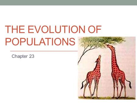 THE EVOLUTION OF POPULATIONS Chapter 23. The Smallest Unit of Evolution One misconception is that organisms evolve during their lifetimes Natural selection.
