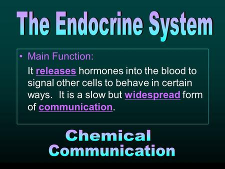 Main Function: It releases hormones into the blood to signal other cells to behave in certain ways. It is a slow but widespread form of communication.