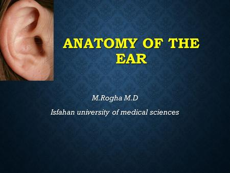 ANATOMY OF THE EAR M.Rogha M.D Isfahan university of medical sciences.
