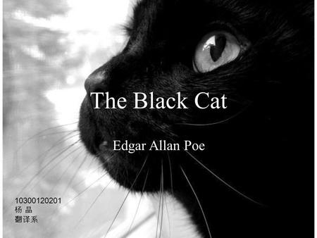 a summary of the black cat by edgar allan poe Genre: horror topics: madness, unintended consequences, guilt review: the  black cat is probably edgar allan poe's most famous short story.