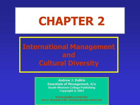 Diversity and Cultural Issues in Project Management