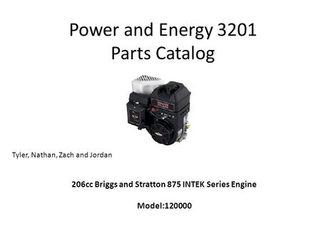 Power and Energy 3201 Parts Catalog 206cc Briggs and Stratton 875 INTEK Series Engine Model:120000 Tyler, Nathan, Zach and Jordan.
