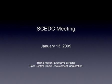 SCEDC Meeting January 13, 2009 Trisha Mason, Executive Director East Central Illinois Development Corporation.