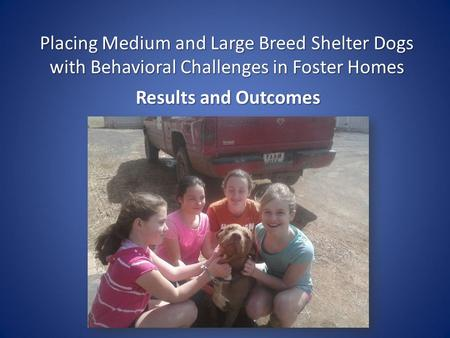 Placing Medium and Large Breed Shelter Dogs with Behavioral Challenges in Foster Homes Results and Outcomes.