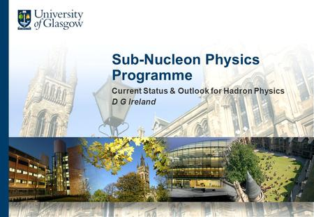 Sub-Nucleon Physics Programme Current Status & Outlook for Hadron Physics D G Ireland.