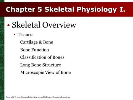 Copyright © 2003 Pearson Education, Inc. publishing as Benjamin Cummings Chapter 5 Skeletal Physiology I. Skeletal Overview Tissues: Cartilage & Bone Bone.