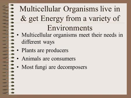 Multicellular Organisms live in & get Energy from a variety of Environments Multicellular organisms meet their needs in different ways Plants are producers.