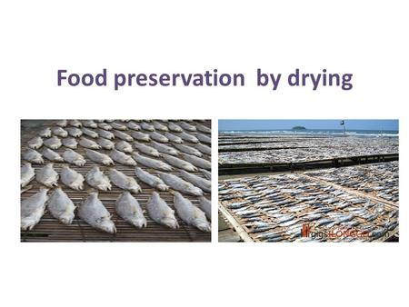 Food preservation by drying. Fish drying Small fishes - dried whole; large fish - dried by cutting open or cutting to small pieces to ensure faster drying.