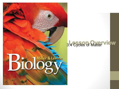 Lesson Overview 3.4 Cycles of Matter. Recycling in the Biosphere How does matter move through the biosphere?