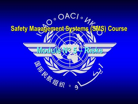 Safety Management Systems (SMS) Course