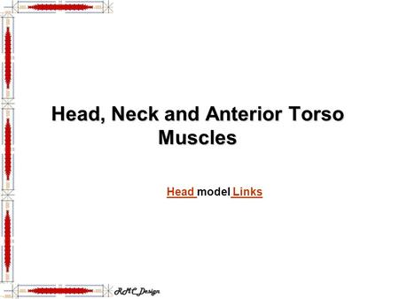 Head, Neck and Anterior Torso Muscles