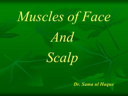 Muscles of Face And Scalp Dr. Sama ul Haque. Objectives Explain the muscle of scalp with their origin, insertion, nerve supply and action. Identify the.