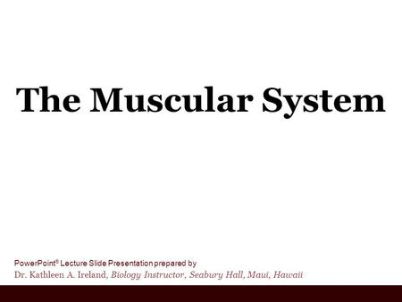 PowerPoint ® Lecture Slide Presentation prepared by Dr. Kathleen A. Ireland, Biology Instructor, Seabury Hall, Maui, Hawaii The Muscular System.