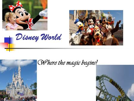Disney World Where the magic begins!. Location Disney is in Orlando Florida!