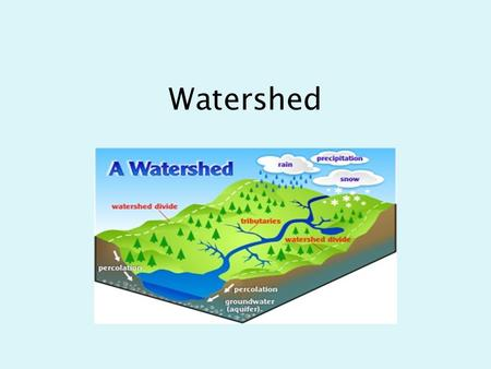 Watershed Two major factors define a watershed: Gravity and Topography