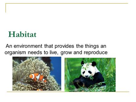 Habitat An environment that provides the things an organism needs to live, grow and reproduce.
