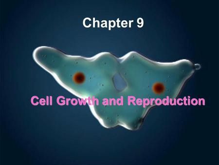 Cell Growth and Reproduction Chapter 9. Chapter Objective Describe the processes of cell growth and cell reproduction (SPI 3210.1.6.)