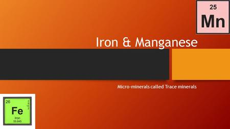 Iron & Manganese Micro-minerals called Trace minerals.
