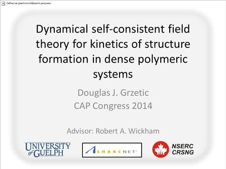 Dynamical self-consistent field theory for kinetics of structure formation in dense polymeric systems Douglas J. Grzetic CAP Congress 2014 Advisor: Robert.