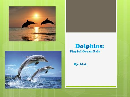 Dolphins: Playful Ocean Pals By: M.A.. Where do dolphins live and why?