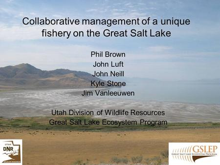 Collaborative management of a unique fishery on the Great Salt Lake Phil Brown John Luft John Neill Kyle Stone Jim Vanleeuwen Utah Division of Wildlife.