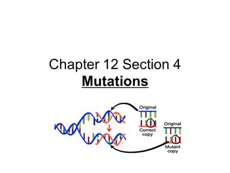Chapter 12 Section 4 Mutations. Mutations DNA contains the code of instructions for cells. Sometimes, an error occurs when the code is copied. - Such.