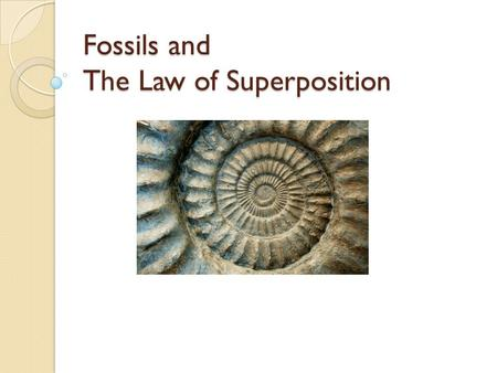 Fossils and The Law of Superposition. Fossils and Superposition What is a fossil? The trace or remains of an organism that lived long ago, most commonly.