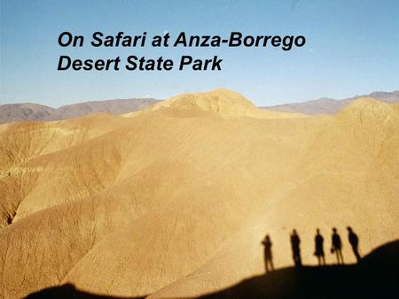 On Safari at Anza-Borrego Desert State Park. Let's follow the paleontology staff into the field…